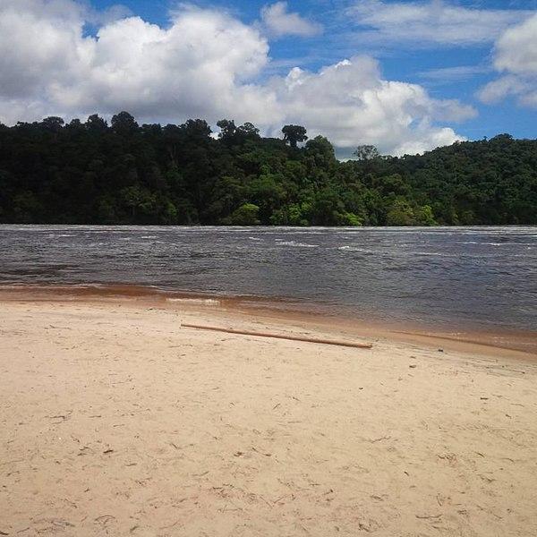 Parque nacional El Caura - Venezuela.