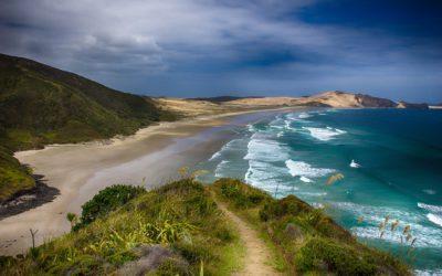 Nueva Zelanda | Un día con 3 sismos y alerta de tsunami